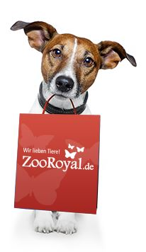 zooroyal-gutschein-hund